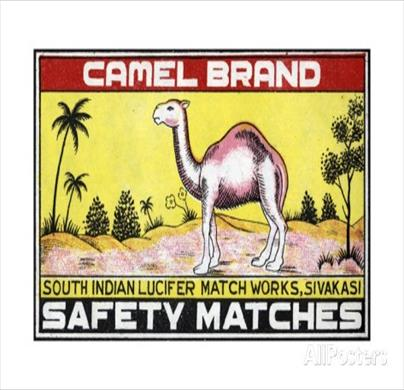 Camel Matches combo pack